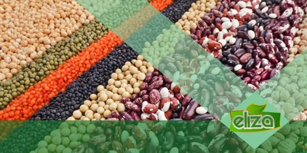 مراکز تولید وتوزیع حبوبات قیمت مناسب