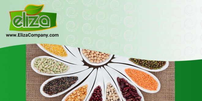 سایت بازار حبوبات ایران