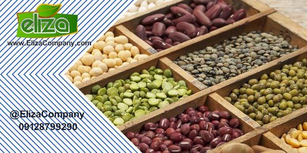 صادرات حبوبات به بازار قطر
