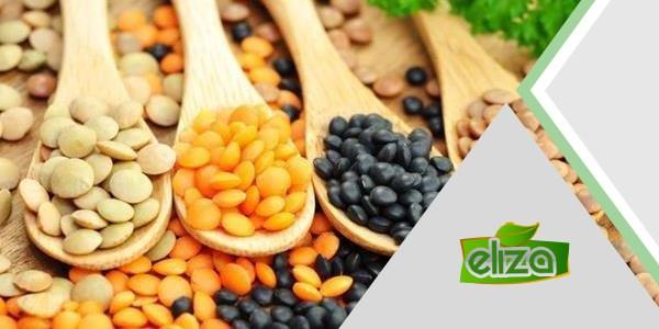 عرضه انواع حبوبات ارگانیک در کشور