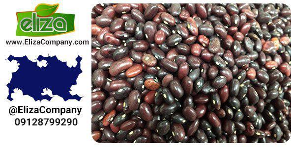 قیمت لوبیا قرمز اتیوپی