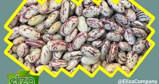 واردات لوبیا از چین