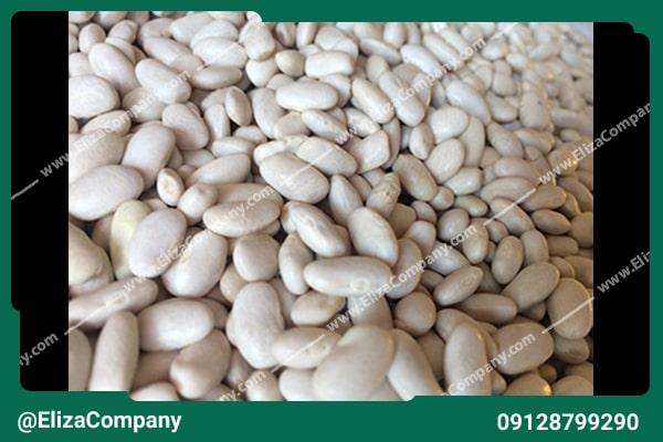 قیمت لوبیا سفید 98