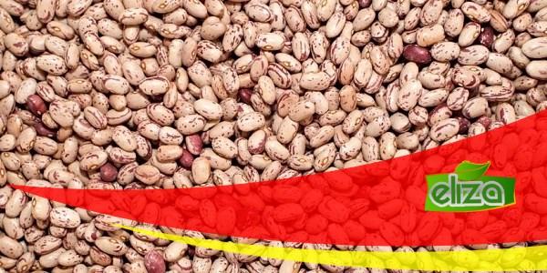 قیمت لوبیا چیتی خمین