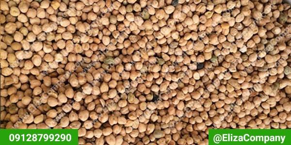 صادرات نخود ایرانی