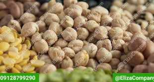 قیمت حبوبات تبریز