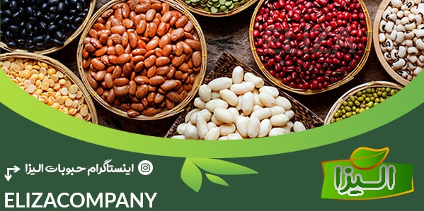 توزیع انواع حبوبات وارداتی و صادراتی