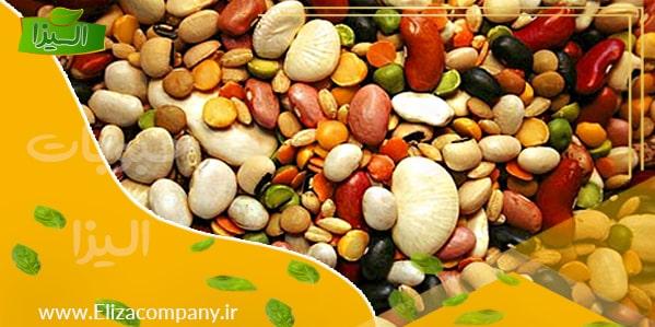 عرضه کننده انواع لوبیا صادراتی