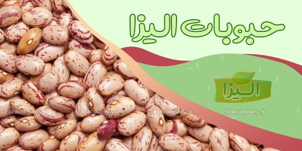 قیمت روز لوبیا چیتی